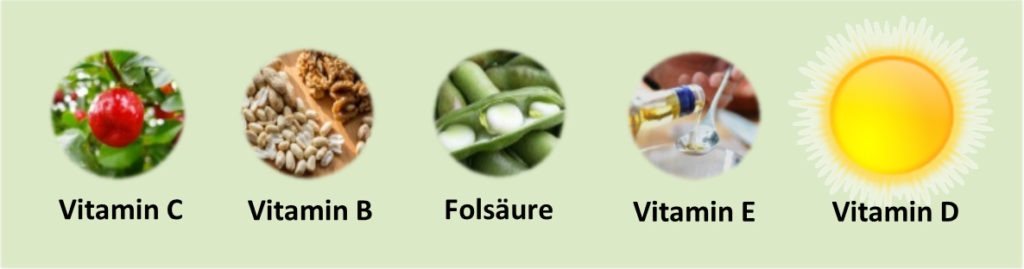 Vitamine in Lebensmitteln